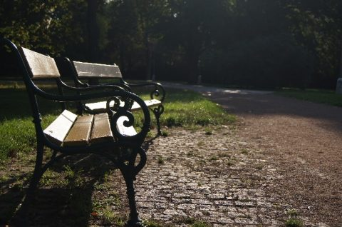 Brno day trips: leaf-peeping Autumn walks