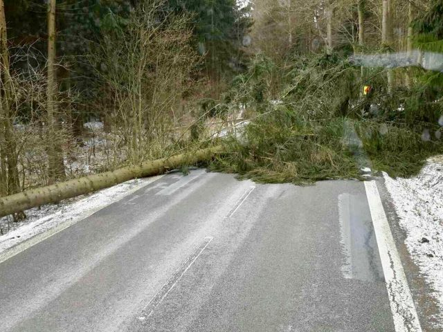 Strong winds in South Moravia