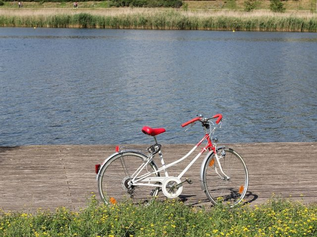 Svitava River cycle path to be closed until mid-August