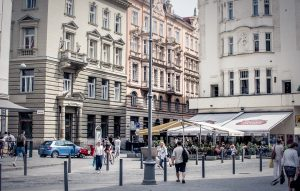 The Great Brno Expat Survey: The First Step in Shaping New Public Policies