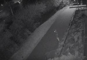 Woman Saved By Witnesses During Attempted Sexual Assault In Líšeň