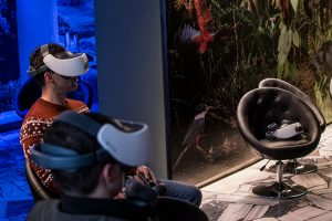 Experience Wildlife in the Centre of Brno Through The Power of Virtual Reality