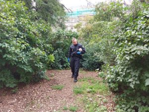 Brno Police Carry Out Mass Clean-Up of Syringes Following Two Incidents Involving Children