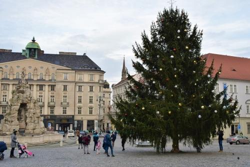 christmas-installations-ferris-tree-nativity-credit-KB-Bd (6)