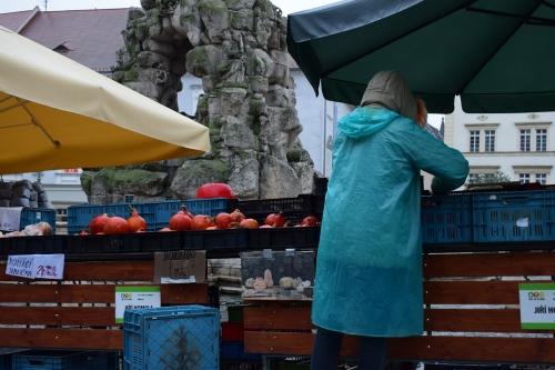 zelny-trh-veg-market-credit-KB-BD (9)